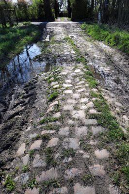 Pave from Paris-Roubaix